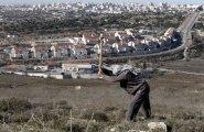 الاستيطان في الضفة الغربية.jpg