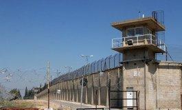 سجن جلبوع.jpg