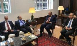 خلال لقاء وزير الخارجية المصري والسوري.jpg